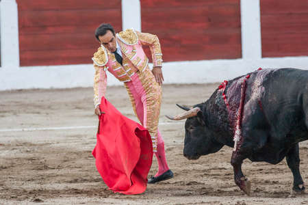 cid: Linares, SPAIN - August 28 2011: The Spanish Bullfighter Manuel Jesus El Cid bullfighting with the crutch in the Bullring of Linares, Spain