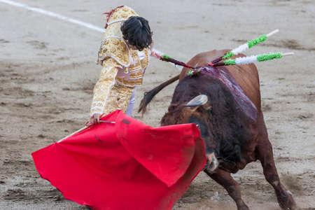 Linares, SPAIN - August 29 2014: The Spanish Bullfighter Curro Diaz bullfighting with the crutch in the Bullring of Linares, Spain