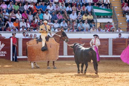 weaken: Pozoblanco, Spain - September 24, 2011: Picador bullfighter, lancer whose job it is to weaken bulls neck muscles, in the bullring fo Pozoblanco, Cordoba province, Spain Editorial