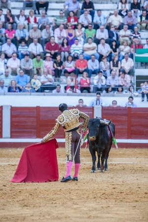 bullfighting: Pozoblanco, Spain - September 24, 2011: The Spanish Bullfighter El Fundi bullfighting with the crutch in the Bullring of Pozoblanco, Spain