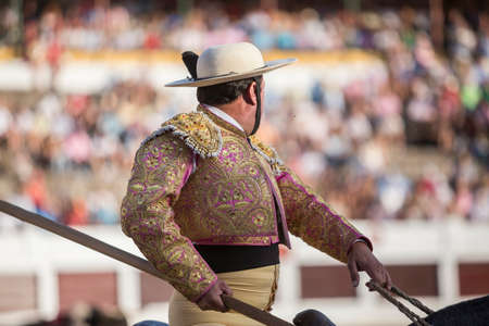 fighting bulls: Linares, SPAIN - August 28 2014: Picador bullfighter, lancer whose job it is to weaken bulls neck muscles, in the bullring for Linares, Spain