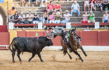 braveness: Andujar, SPAIN - September 12, 2009: Andy Cartagena, bullfighter on horseback spanish, Andujar, Jaen, Spain