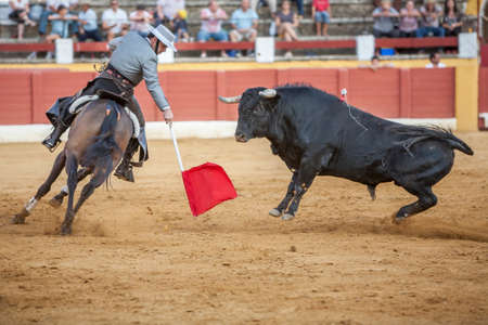 braveness: Andujar, SPAIN - September 12, 2009: Alvaro Montes, bullfighter on horseback spanish, Andujar, Jaen, Spain