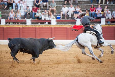 braveness: Andujar, SPAIN - September 12, 2009: Leonardo Hernandez, bullfighter on horseback spanish, Andujar, Jaen, Spain Editorial