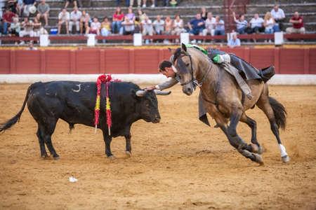 Andujar, SPAIN - September 12, 2009: Andy Cartagena, bullfighter on horseback spanish, Andujar, Jaen, Spain