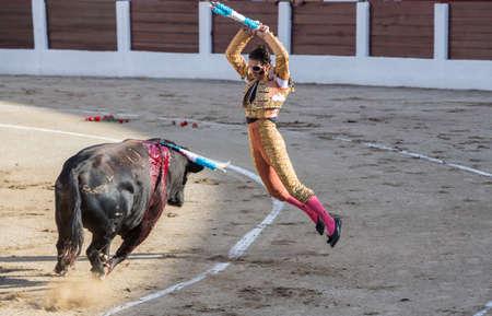 padilla: Linares, SPAIN - August 28, 2014: Spainish bullfighter Juan Jose Padilla fixing banderillas to the bull 650 kg bull in the Bullring of Linares, Spain