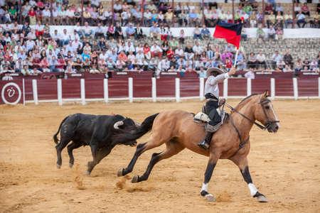 capote: Ubeda, Spain - October 2, 2010: Spanish bullfighter on horseback Leonardo Hernandez putting the bull banderillas in Pozoblanco