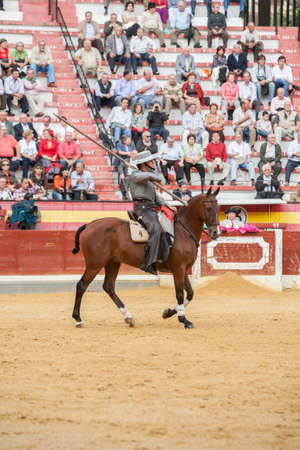 braveness: Jaen, SPAIN - October 13, 2008: Alvaro Montes, bullfighter on horseback spanish witch garrocha (blunt lance used on ranches), Jaen Spain