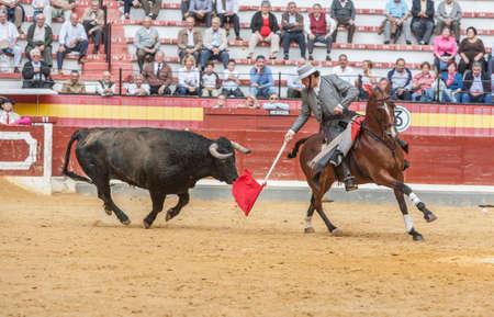 braveness: Jaen, SPAIN - October 13, 2008: Alvaro Montes, bullfighter on horseback spanish, Jaen, Spain
