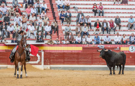 alvaro: Jaen, SPAIN - October 13, 2008: Alvaro Montes, bullfighter on horseback spanish, Jaen, Spain