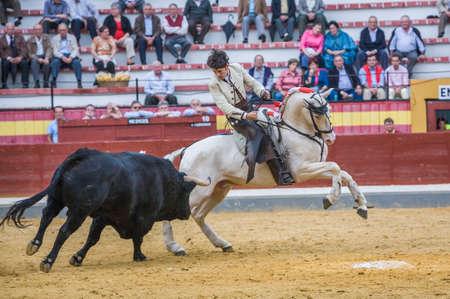 braveness: Jaen, SPAIN - October 13, 2008: Diego Ventura, bullfighter on horseback spanish, Jaen, Spain