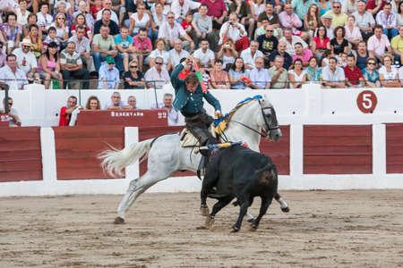 Linares, SPAIN- august 31, 2011: Spanish bullfighter on horseback Fermin Bohorquez bullfighting on horseback, in Linares, Spain