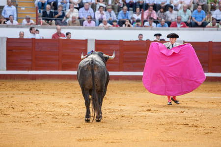 capote: Pozoblanco, Spain - September 24, 2011: Bullfighter with the capote or cape in the Bullring of Pozoblanco, Spain Editorial
