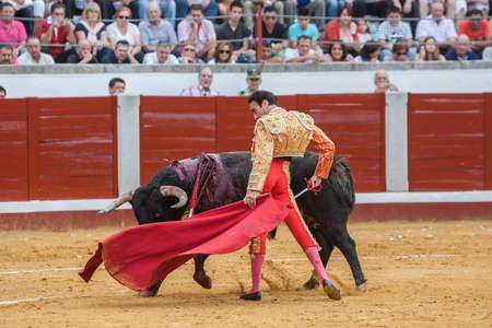 bullfighting: Pozoblanco, Spain - September 23, 2011: The Spanish Bullfighter Enrique Ponce bullfighting with the crutch in the Bullring of Pozoblanco, Spain Editorial