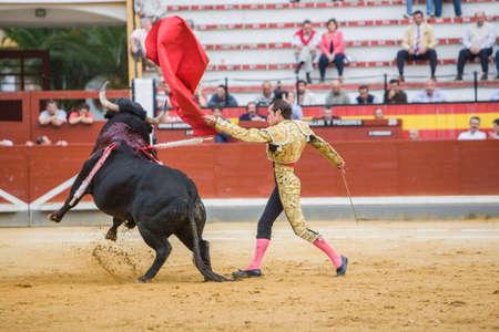 torero: Jaen, SPAIN - October 17, 2008: Spanish bullfighter Cesar Jimenez in the alley waiting at the paseillo or initial parade bullfight at Jaen bullring, Spain Editorial