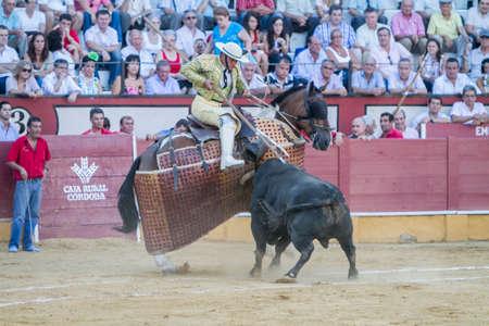 weaken: Pozoblanco, Spain - September 5, 2010: Picador bullfighter, lancer whose job it is to weaken bulls neck muscles, in the bullring for Ubeda, Spain