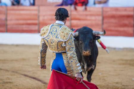 torero: Sabiote, SPAIN, September 9, 2011: The Spanish Bullfighter Francico Rivera bullfighting with the crutch in the Bullring of Sabiote, Spain