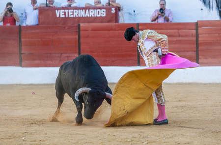 bullfighting: Sabiote, SPAIN, September 9, 2011: The Spanish Bullfighter Jose Carlos Venegas bullfighting with the crutch in the Bullring of Sabiote, Spain Editorial