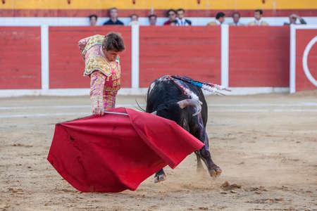 bullfighting: Sabiote, SPAIN, August 26, 2011: The Spanish Bullfighter Miguel Tendero bullfighting with the crutch in the Bullring of Sabiote, Spain