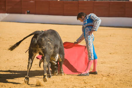 Baeza, SPAIN, June 27, 2009: The Spanish Bullfighter bullfighting with the crutch in the Bullring of Baeza, Spain Editorial