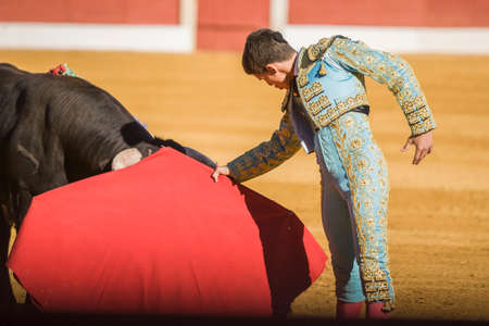 corrida de toros: Baeza, SPAIN, June 27, 2009: The Spanish Bullfighter bullfighting with the crutch in the Bullring of Baeza, Spain Editorial