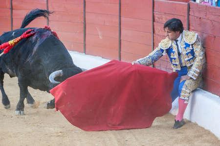 bullfighting: Sabiote, SPAIN, September 9, 2011: The Spanish Bullfighter Francico Rivera bullfighting with the crutch in the Bullring of Sabiote, Spain