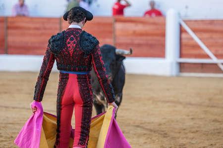 corrida de toros: Toro mirando a la muleta del torero en una corrida de toros, España