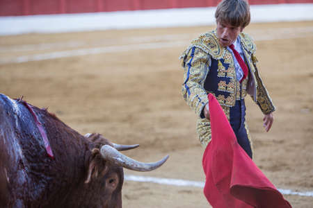 Andujar, Spain - September 7, 2014: The Spanish Bullfighter Manuel Benitez El Cordobes bullfighting with the crutch in the Bullring of Andujar, Spain