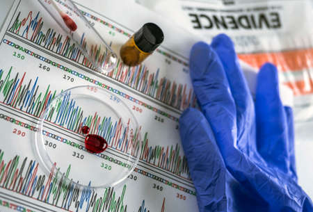 Disco de muestra de sangre Petri en busca de prueba de ADN, imagen conceptual
