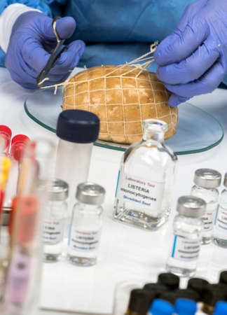 Expert analyzes stuffed meat contaminated by bacterium of listeria in laboratory, sprout caused in Spain Фото со стока