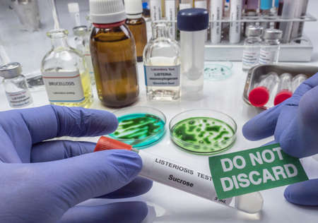 Expert analyzes stuffed meat contaminated by bacterium of listeria in laboratory, sprout caused in Spain Imagens