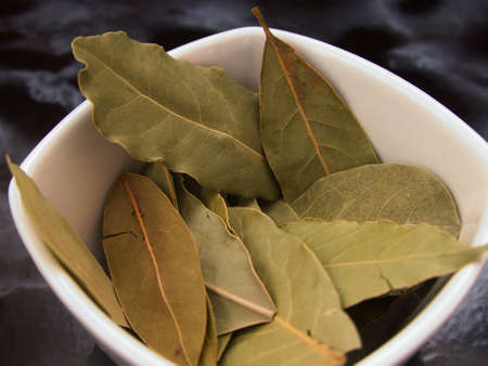 bay leaf, a spice necessary in the preparation of meat sauces