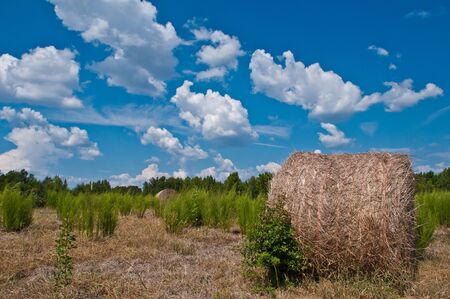 Late summer in the easley, sout carolina countryside sees large cumulonimbus cloudscapes, hay bales Stock Photo - 15621720