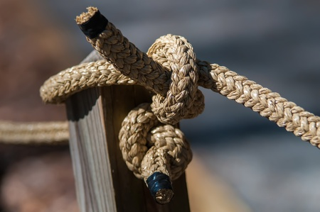 hitched: rope knot