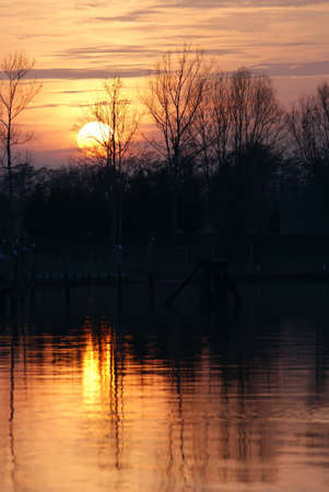 treeline: Late afternoon with orange sky and silhouetted treeline