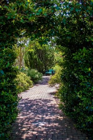 Garden Arch leading throught into a botanical wonderland photo