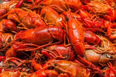 Bunch of red cooked crayfish on dinner table photo