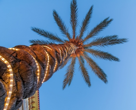 palm tree scenics at a luxury boarwalk and resort in florida Stock Photo