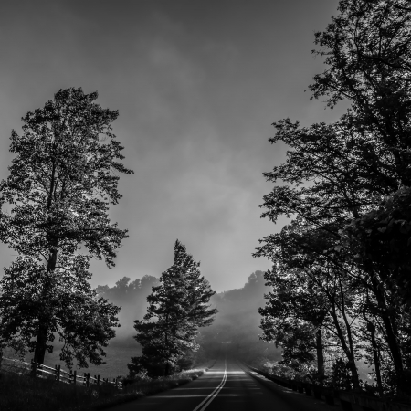 morning blue hour: early morning nature on blue ridge parkway