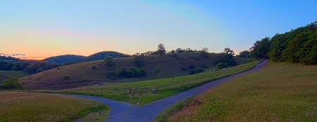 early morning nature on blue ridge parkway photo