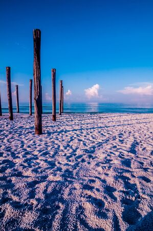 pilings: old sea pier ruins on the beach in the morning Stock Photo