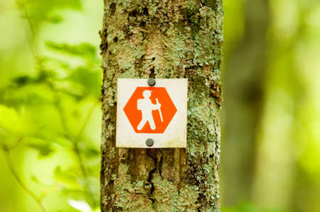 hiking trail: orange hiking trail sign in forests of north carolina Stock Photo