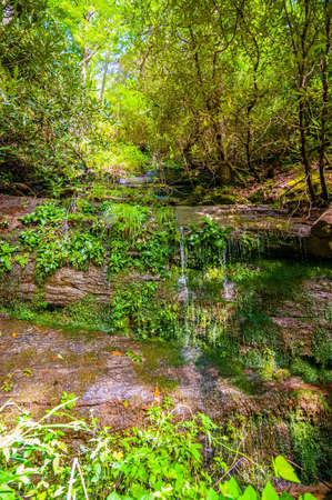 beautiful watrefalls in upstate south carolina  in deep forest photo