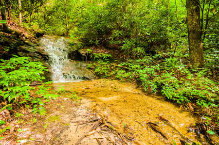 the deep south: beautiful watrefalls in upstate south carolina  in deep forest