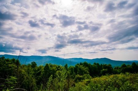 nature around upstate south carolina at lake jocassee gorge mountains photo