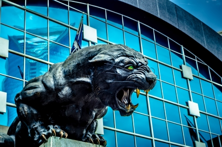 Carolina Panthers NFL Football Team-Maskottchen