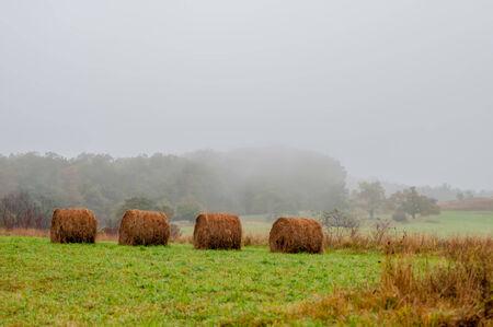 mountain farm land in virginia mountains on a misty day