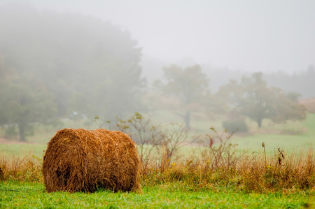 mountain farm land in virginia mountains on a misty day photo