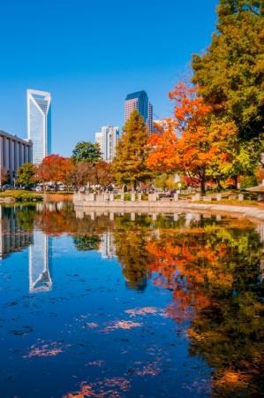 シャーロット市スカイライン青い空と秋のシーズン 写真素材
