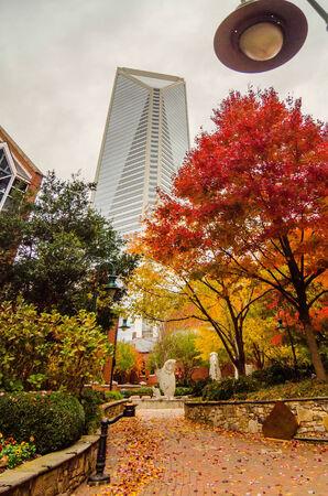 charlotte city skyline autumn season with cloudy sky